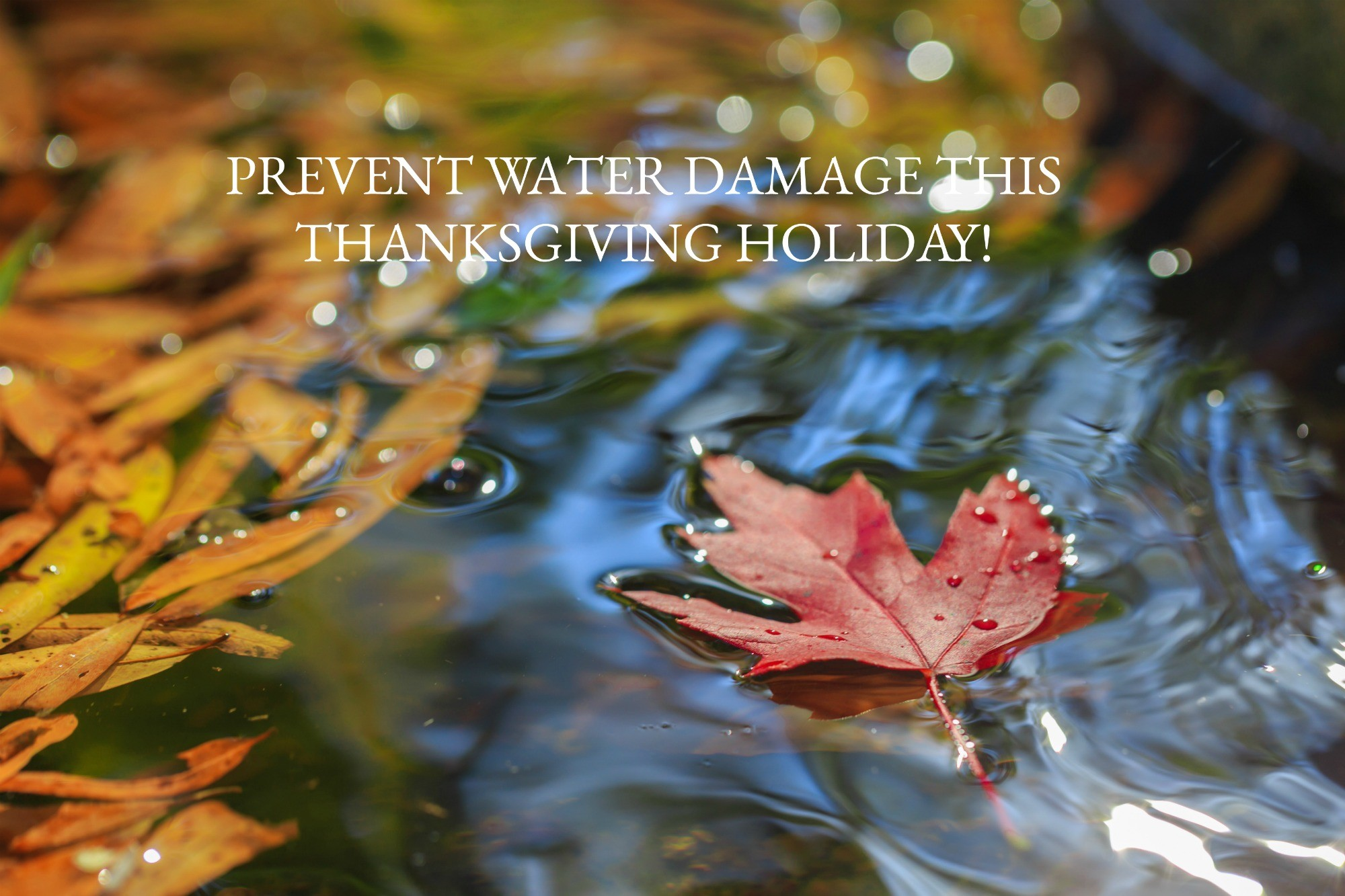 PREVENT WATER DAMAGE THIS THANKSGIVING HOLIDAY
